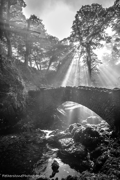 """Owned by the National Trust """"Aira falls"""" sits just of the banks of Ullswater in the parish of Matterdale, Cumbria. I arrived early enough on a lovely misty day to catch the amazing light as it filtered and radiated through the trees, a magical moment."""