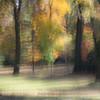 Autumn's Paint