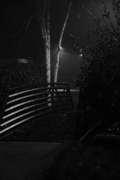Foggy Night, Sierra College
