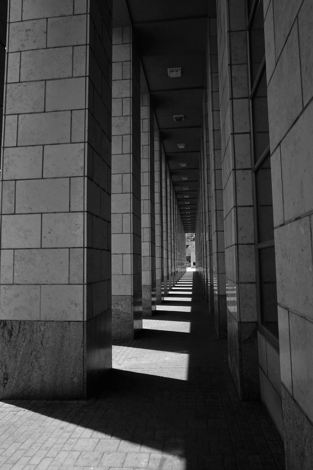 Corridor of Light
