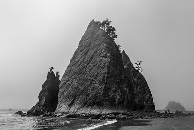 Washington Coast Sea Stacks
