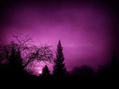 Dark Misty Morning