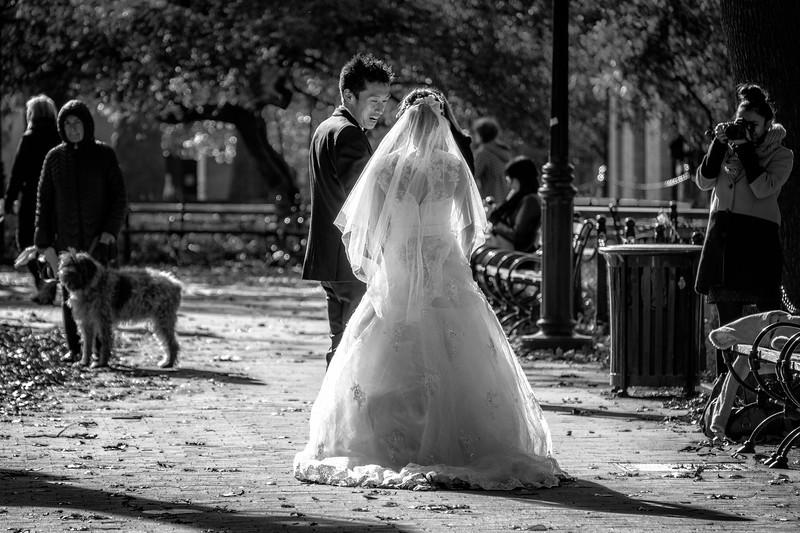 Wedding Couple in Washington Square Park in Autumn