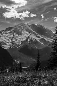 Mount Rainier from Sunrise