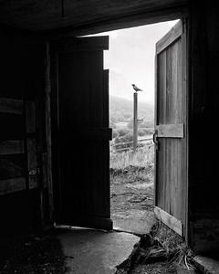 barn door from within