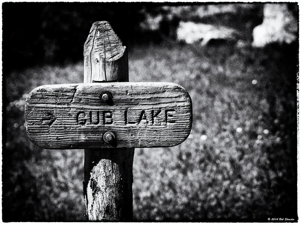 Cub Lake Trail Sign