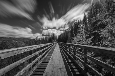 Trestle 1 - Centered Long Burn B+W