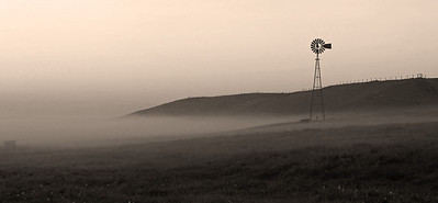 Misty Prairie morning