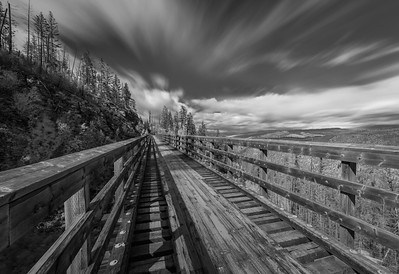 Trestle 2 Offset Long Burn B+W