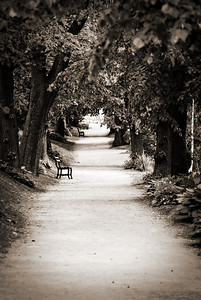 I love benches and walkways :)