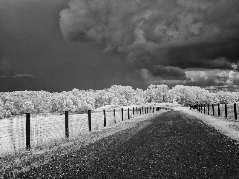 Impending storm on the Farm