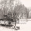 Frontier Buckboard in the snow, in black and white