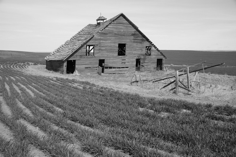 Weathered barn and fallen windmill