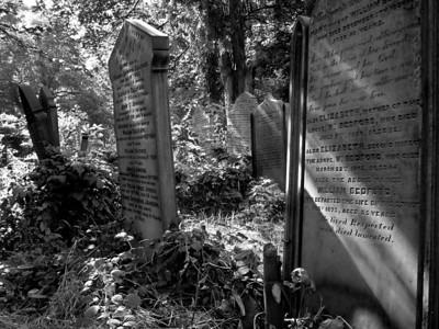 Somewhat overgrown Beckett Street Cemetery in Leeds