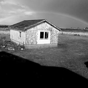 black & white rainbow