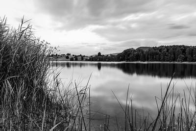 Lac de Bret, Puidoux