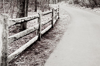 Path, linear, linear trail, the wallingford linear trail, wallingford Ct., walk, fun, fence, fence line. b&w, black and white