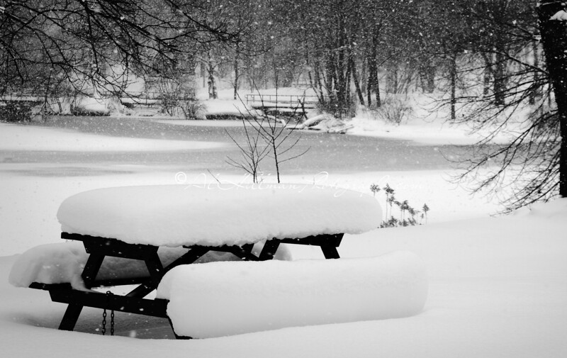 Dufferin Islands, Snowy Picnic table