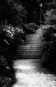 Niagra Falls (52)-300