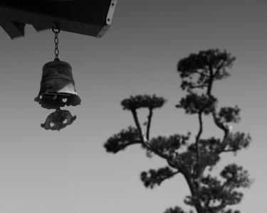 Futaku bell and tree, Hasedera