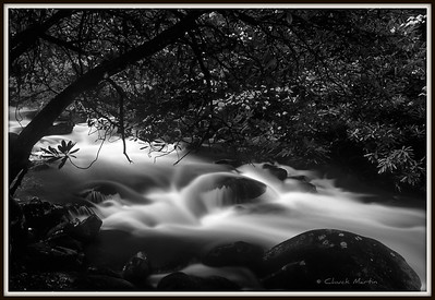 Rain swollen stream in the Smoky Mountains.