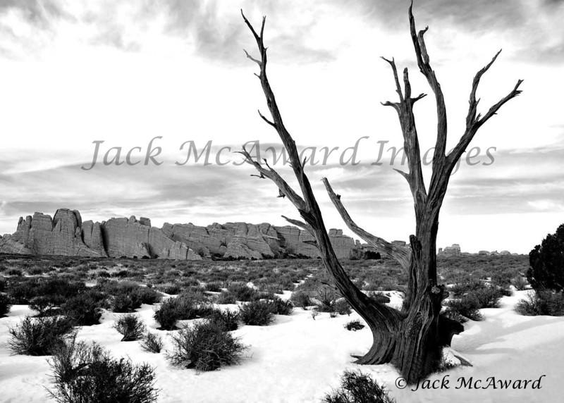 Winter in Moab