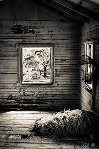 A photo from inside an abandoned cabin at Henderson Flat, Arizona.  The water catchment system appeared to still be in working order as the tank was completely full.