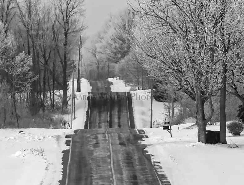 A Frozen Country Road 2015