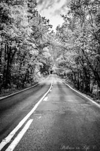 Peaceful Sunday Drive