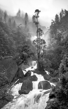 Cascade Creek, Yosemite National Park, CA