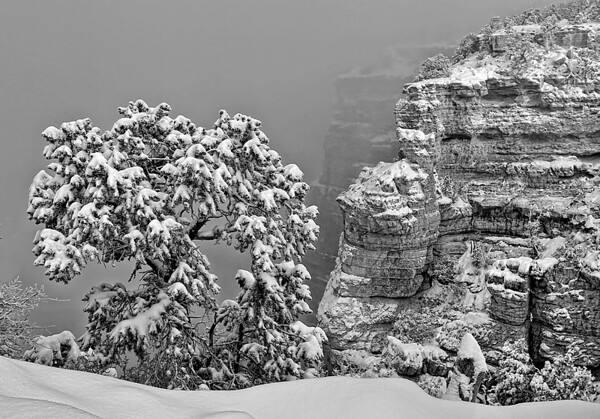 Winter on the south rim of the Grand Canyon, #0310