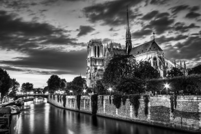 Evening in Paris at Notre Dame
