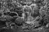 Garden Falls at Minnesota Landscape Arboretum