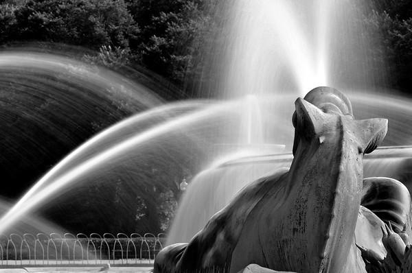 Buckingham Fountain In Black And White (VIII)