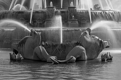Buckingham Fountain In Black And White (V)