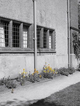 Wightwick Manor 25.04.11