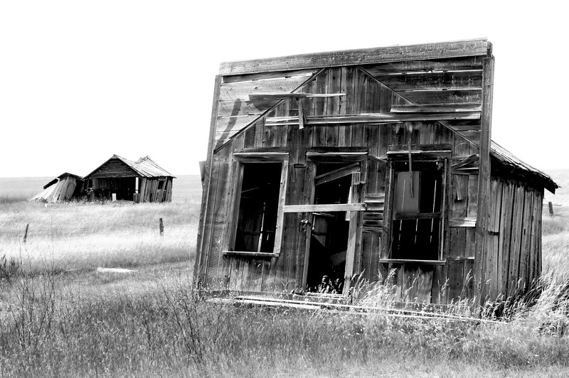 Wind swept.  Buildings in the WY Black HIlls.