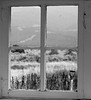 From the past to the present.  Looking out from the Mable Dodge Luhan House, Taos, NM