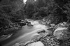 Bear River Petoskey