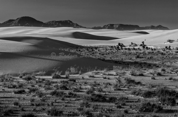 White Sands  Moving