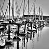 Pier 39 harbor (b/w)