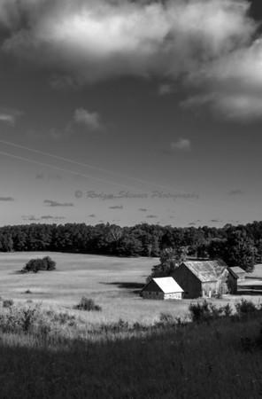 Thoreson Farm III