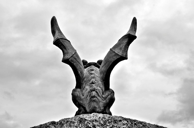 Wings of a gargoyle (b/w)