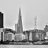 SF cityscape (b/w)