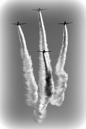 North American Aviation SNJ-2 Texan - Geico Skytypers