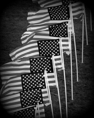 Healing Field of Honor - Naperville, Illinois - 2012