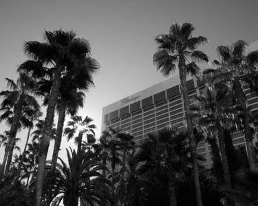 Las Vegas Architecture - Flamingo