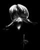Orchid - Paphiopedilum Black Cherry