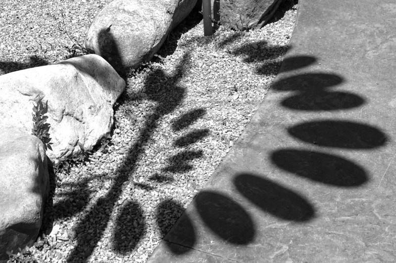 Santa Fe Shadow