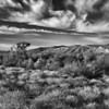 Clouds above the Desert, AZ